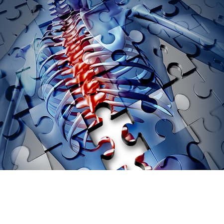 Современный взгляд на проблему заболеваний суставов